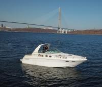Sea Ray 310DA дизельный