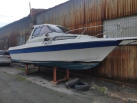 Yamaha Fish 25 (F25) лодка c подвесным мотором